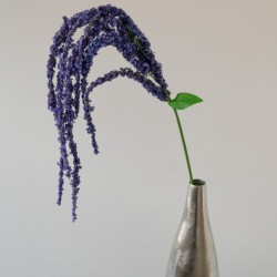 Purple amaranthus spray